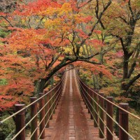 Hananuki Gorge