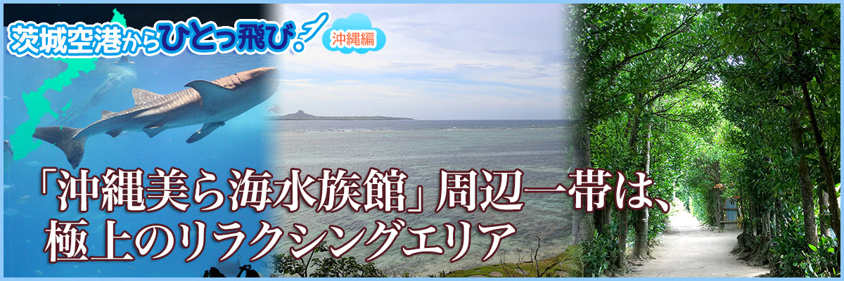 「沖縄美ら海水族館」周辺一帯は極上のリラクシングエリア