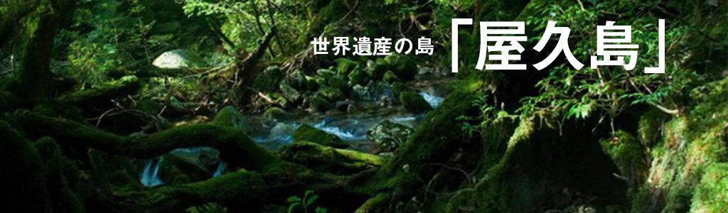 屋久島タイトル