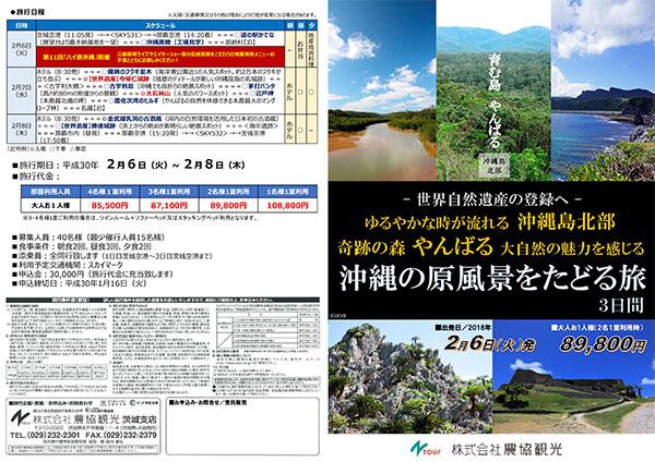 """育む島""""やんばる""""~世界自然遺産の登録へ~ ゆるやかな時が流れる沖縄島北部 奇跡の森『やんばる』大自然の魅力を感じる 沖縄の原風景をたどる旅 3日間"""