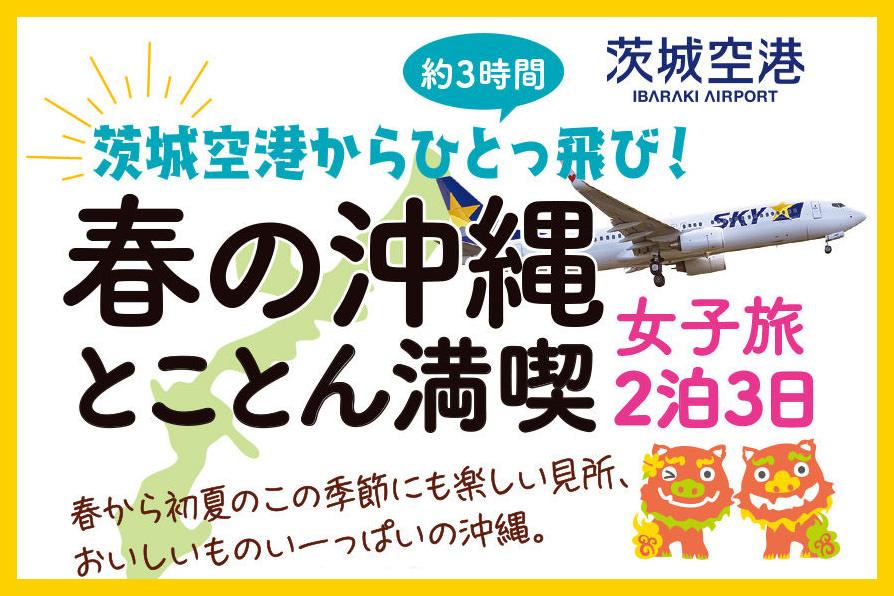 いばらきスカイガイドが行く!ほっこり沖縄 女子旅 体験記