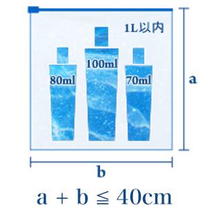 液体物の持込み制限