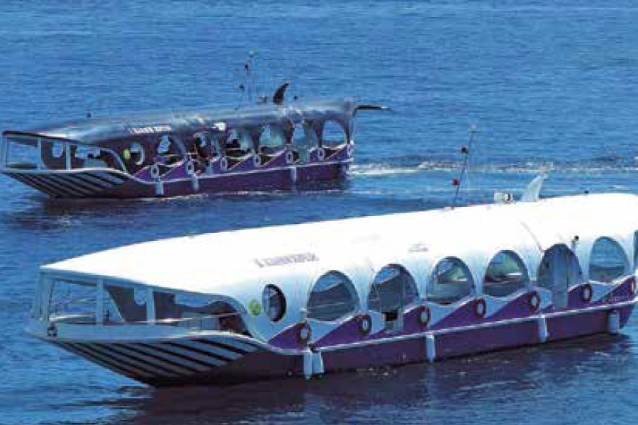 クジラ型ボート